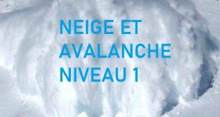 Formation Neige et Avalanche Niveau 1